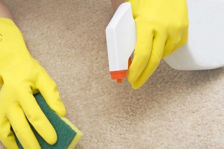 10 Simple Cleaning Tips To Make Old Things Look New thehandymano the handy mano manomano mano diy do it yourself tips and tricks  spray bottle stain carpet